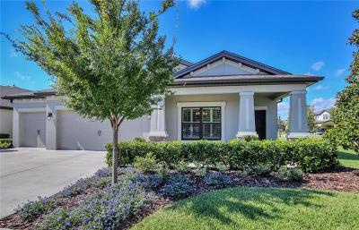 Land O Lakes Single Family Home For Sale: 8323 Bluevine Sky Drive