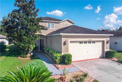 Wesley Chapel Single Family Home For Sale: 4306 Old Waverly Court