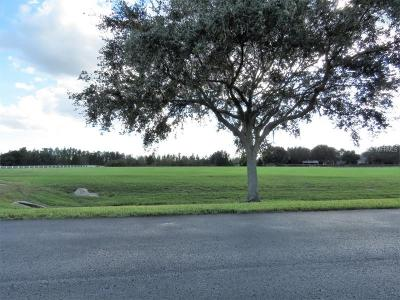 Odessa Residential Lots & Land For Sale: 11439 Trotting Down Drive