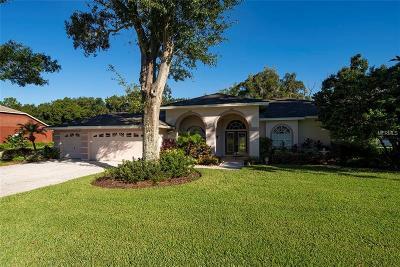 Lutz Single Family Home For Sale: 1007 Kingsborough Gardens Court