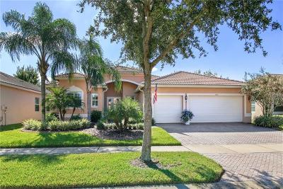 Hillsborough County Single Family Home For Sale: 4977 Sapphire Sound Dr