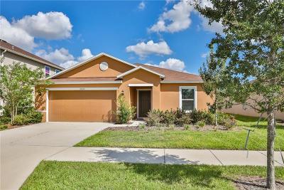 Wimauma Single Family Home For Sale: 14320 Romeo Boulevard