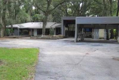 Hillsborough County Single Family Home For Sale: 3019 Lithia Pinecrest Road