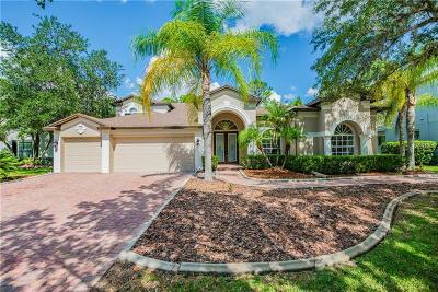Tampa Single Family Home For Sale: 5046 Devon Park Drive