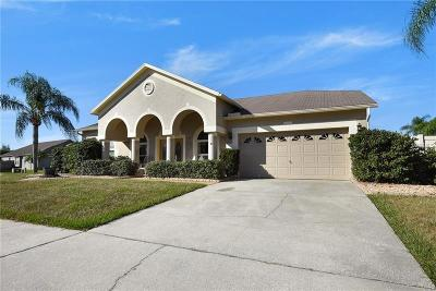 Brandon Single Family Home For Sale: 818 Sandcastle Circle