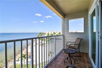 Tampa Condo For Sale: 2506 N Rocky Point Drive #453