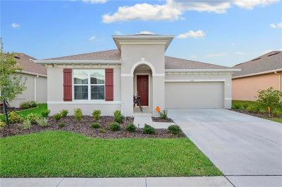 Wesley Chapel Single Family Home For Sale: 5047 Suncatcher Drive