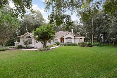 Lithia Single Family Home For Sale: 6029 Hammock Hill Avenue