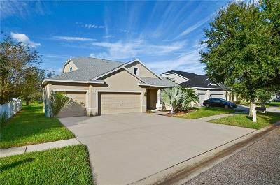 Riverview Single Family Home For Sale: 11906 Summer Springs Drive