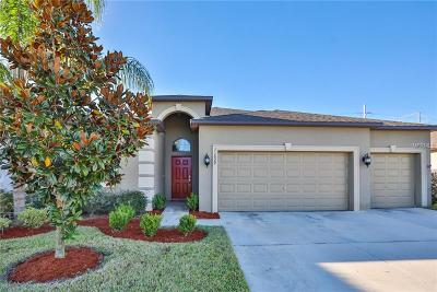Riverview Single Family Home For Sale: 11629 Brighton Knoll Loop
