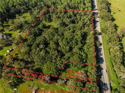 Plant City Residential Lots & Land For Sale: E Paradise Oaks Place Lot 1