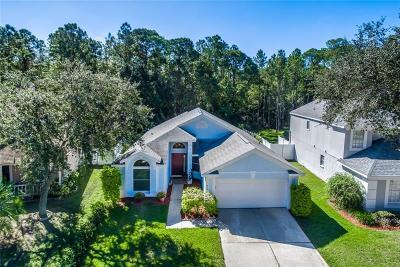 Single Family Home For Sale: 9730 Fredericksburg Road