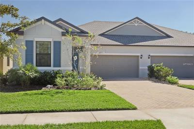 Pasco County Villa For Sale: 17112 Balance Cove
