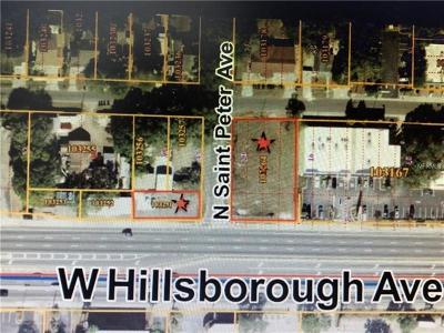 Hillsborough County Commercial For Sale: 2601 W Hillsborough Avenue