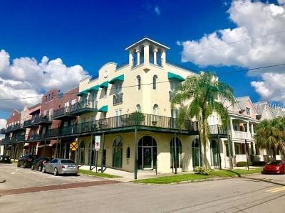 Tampa FL Commercial For Sale: $1,500