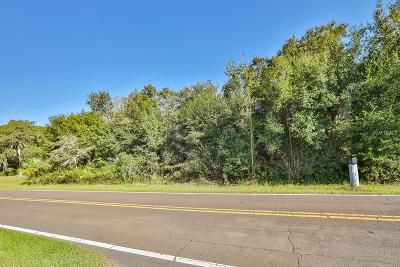 Wimauma Residential Lots & Land For Sale: 1615 Butch Cassidy Trail