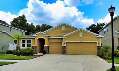 Tampa Single Family Home For Sale: 13420 Canopy Creek Drive