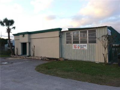 Hillsborough County Commercial For Sale: 7812 Symmes Road