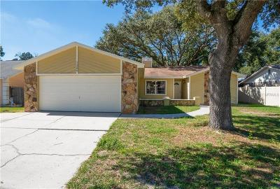 Tampa Single Family Home For Sale: 11206 Fireside Drive