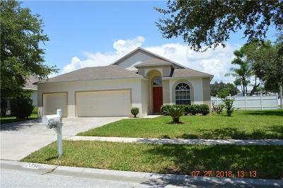 Valrico Single Family Home For Sale: 2750 Abbey Grove Drive