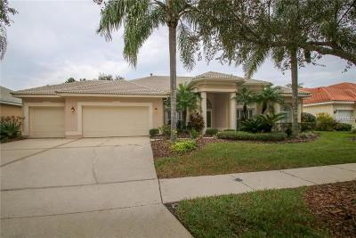 Tampa Single Family Home For Sale: 9128 Highland Ridge Way