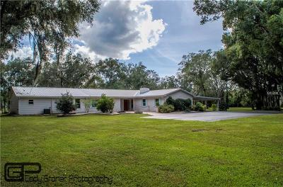 Hillsborough County Single Family Home For Sale: 19115 Livingston Avenue