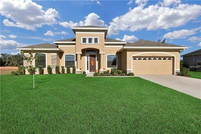 Winter Haven Single Family Home For Sale: 415 Archaic Drive