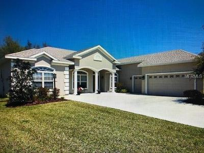 Lake County, Marion County Single Family Home For Sale: 11024 SE 168th Loop
