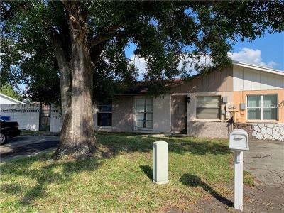 Tampa Single Family Home For Sale: 8805 Plum Grove Court