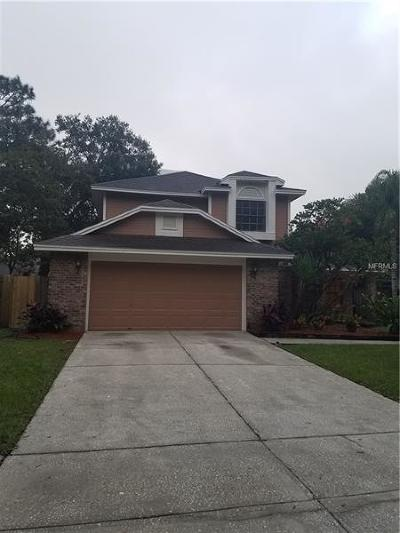 Tampa Single Family Home For Sale: 15111 Craggy Cliff Street