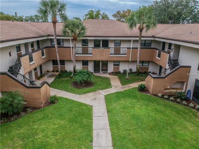 Palm Harbor Condo For Sale: 2700 Nebraska Avenue #2-202