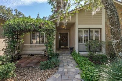 Hillsborough County Single Family Home For Sale: 16611 Vallely Drive