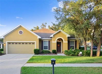 Lithia Single Family Home For Sale: 15818 Starling Water Drive