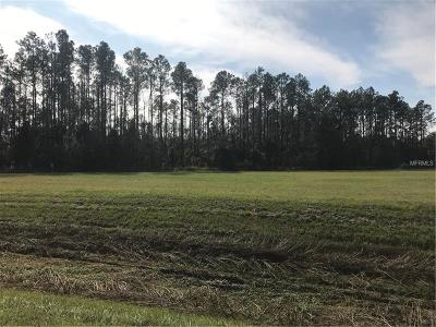 Wesley Chapel Residential Lots & Land For Sale: Bruce B Downs