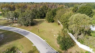 Hernando County, Hillsborough County, Pasco County, Pinellas County Residential Lots & Land For Sale: 17044 Comunidad De Avila