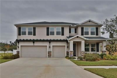 Valrico Single Family Home For Sale: 2239 Valterra Vista Way