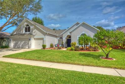 Valrico Single Family Home For Sale: 4518 Compass Oaks Drive, Compass Oaks Drive