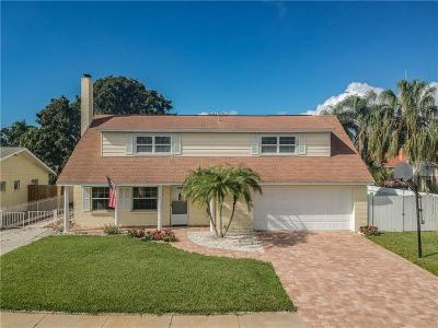 Tampa Single Family Home For Sale: 4722 Soapstone Drive