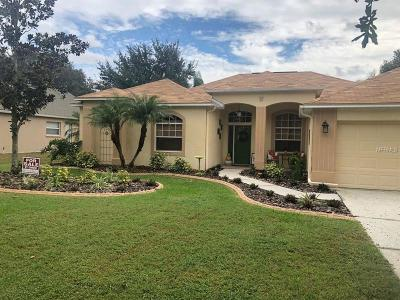 Riverview Single Family Home For Sale: 9211 Waterbird Drive