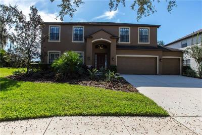 Riverview Single Family Home For Sale: 8844 Alafia Cove Drive