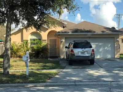 Tampa Single Family Home For Sale: 8902 Southbay Drive