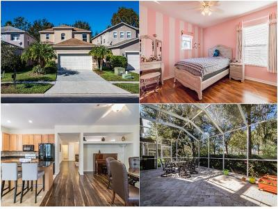 Pasco County Single Family Home For Sale: 2425 Silvermoss Drive