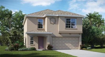 Hillsborough County Single Family Home For Sale: 11110 Hudson Hills Lane