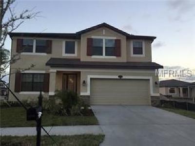 Riverview Single Family Home For Sale: 11730 Albatross Lane
