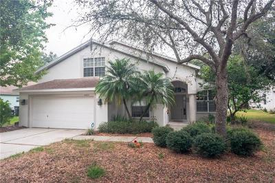 Tampa Single Family Home For Sale: 16203 Leta Trace Court