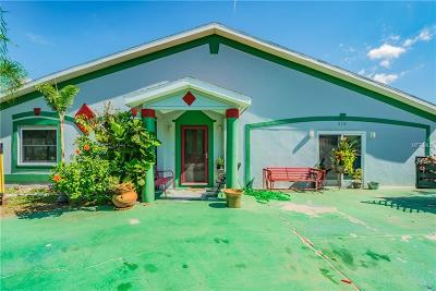 Tarpon Springs Single Family Home For Sale: 519 S Levis Avenue