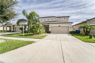 Riverview Single Family Home For Sale: 11415 Blue Crane Street