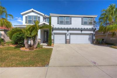 Apollo, Apollo Beach Single Family Home For Sale: 168 Star Shell Drive