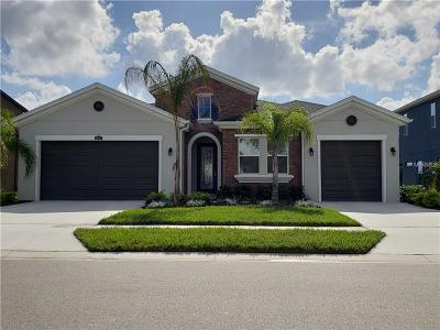 Wesley Chapel Single Family Home For Sale: 29431 Picana Lane