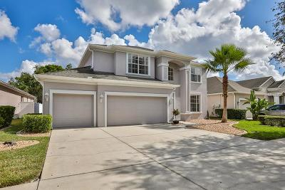 Pasco County Single Family Home For Sale: 10726 Deerberry Drive